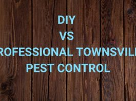 DIY vs Professional Townsville Pest Control