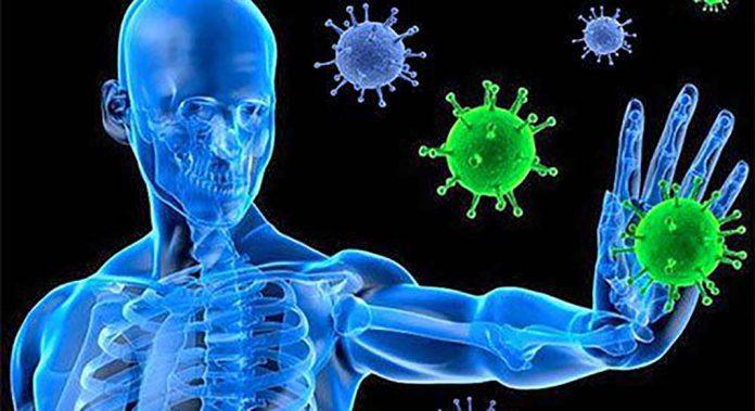 Immunity booster habits