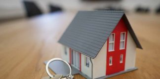 Flipping and Renting Properties