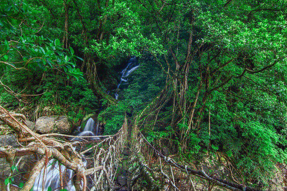Top Resorts in Meghalaya / 1