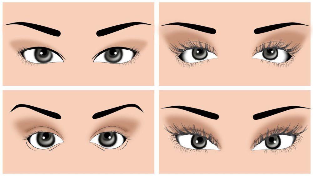 Eye Shapes